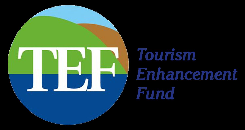 TEF Summer Internship Programme